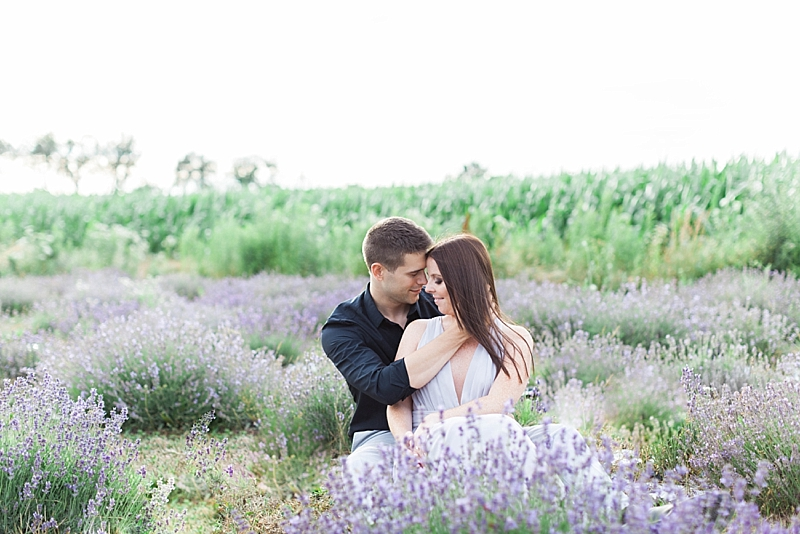 Lavender Field Engagement Photos Ontario