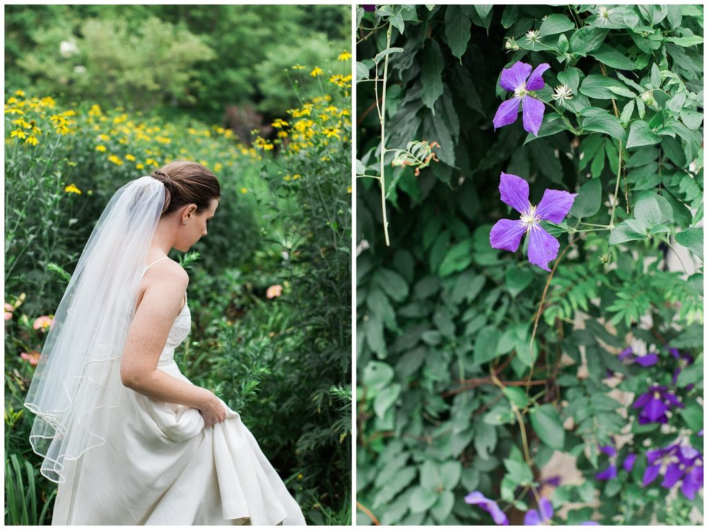 Bride walking through gardens with purple and yellow flowers at Guelph Ontario Wedding | Ontario Wedding Photographer | Toronto Wedding Photographer | 3photography