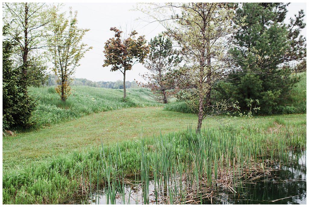 Grassy field on treefarm| Belcroft Estate Wedding| Toronto wedding photographer| Ontario wedding photographer| 3photography