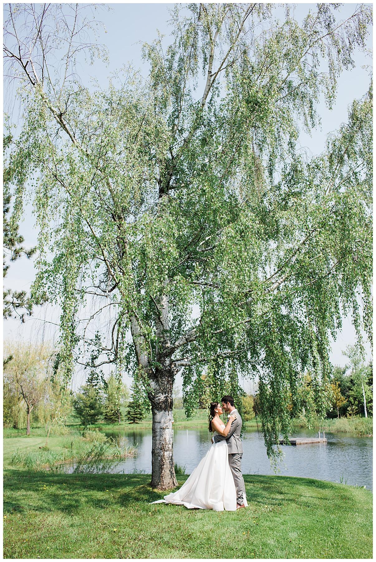 Bride and groom under big tree| tree-farm wedding| Belcroft Estate Wedding| Toronto wedding photographer| Ontario wedding photographer| 3photography