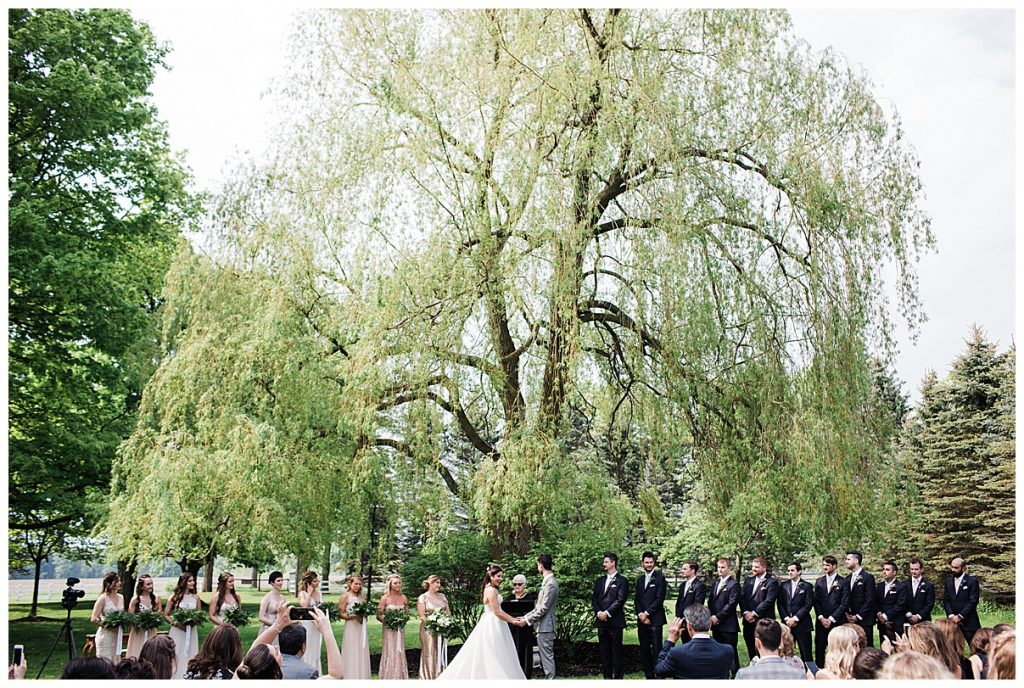 Outdoor tree-farm wedding ceremony| bride and groom get married under huge tree| Belcroft Estate Wedding| Toronto wedding photographer| Ontario wedding photographer| 3photography