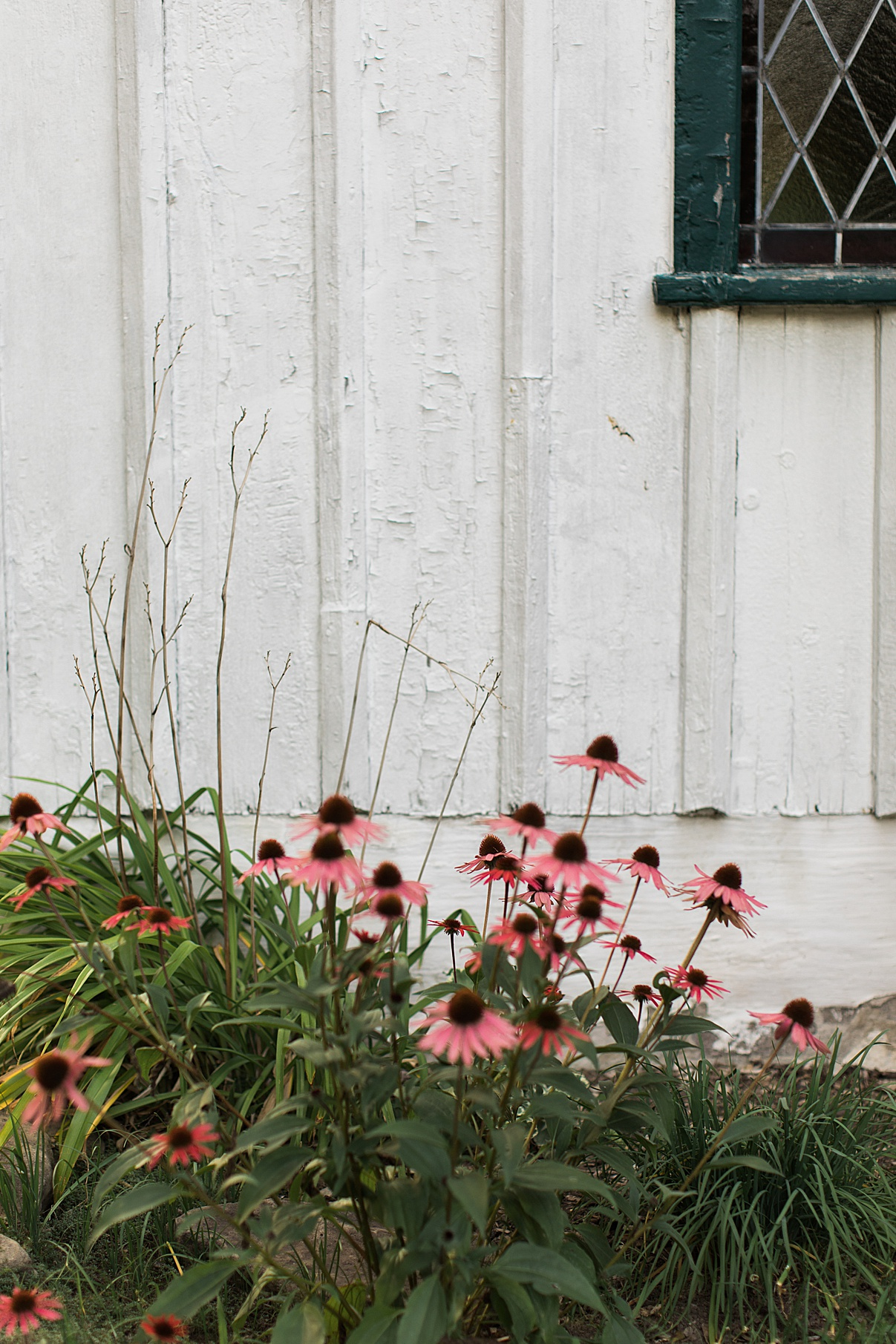 Gorgeous flowers on side of barn for vintage wedding reception | Balls Falls, Ontario Wedding| Ontario Wedding Photographer| Toronto Wedding Photographer| 3Photography| 3photography.ca