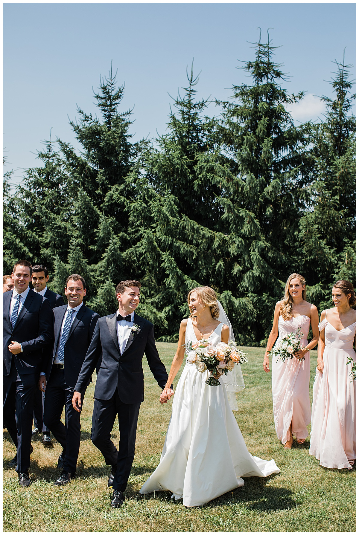 Bridal party walking forward on hill with pine trees behind them| Georgetown, Ontario wedding| 3photography
