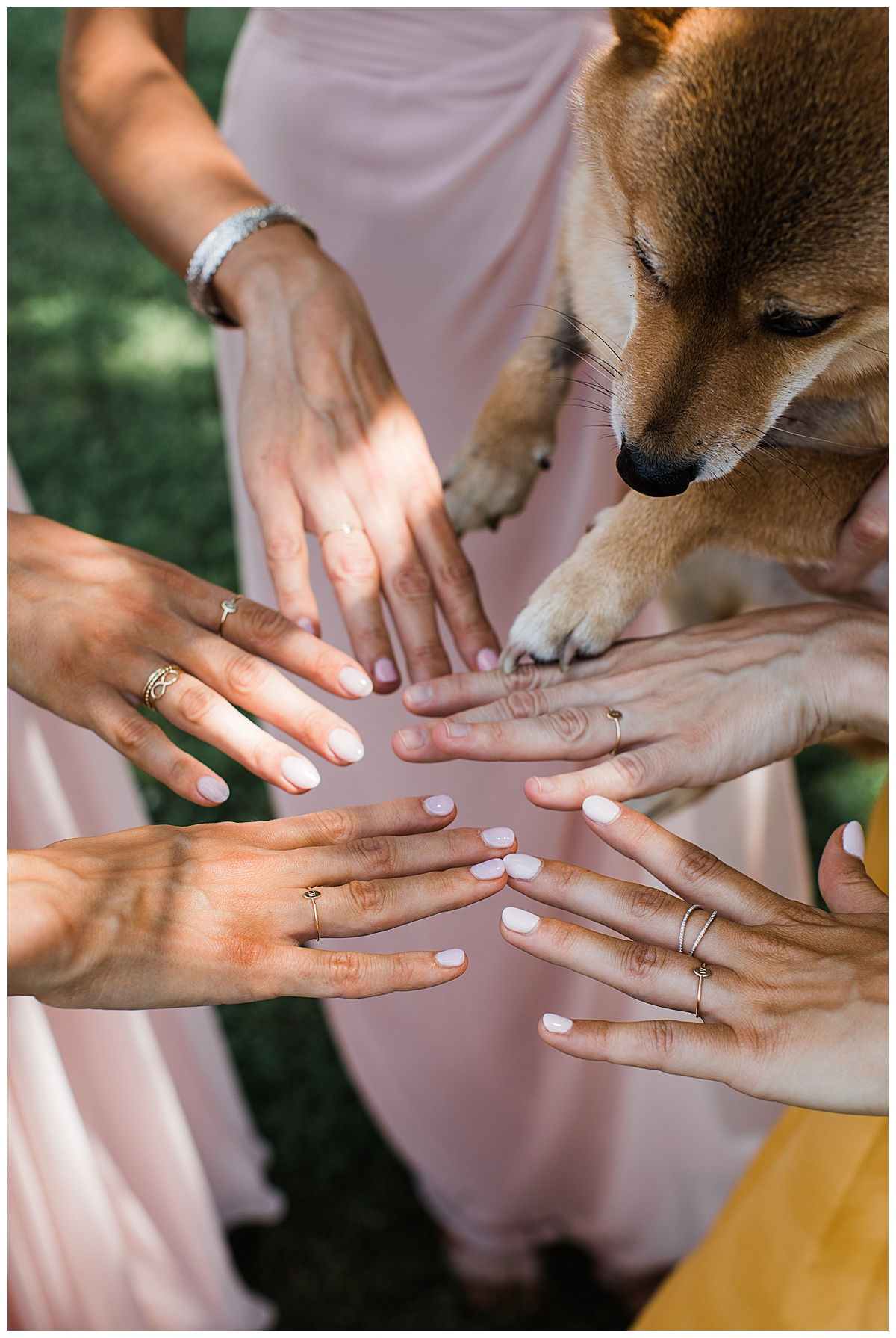 Bridesmaids and dog showing off their manicures  3photography