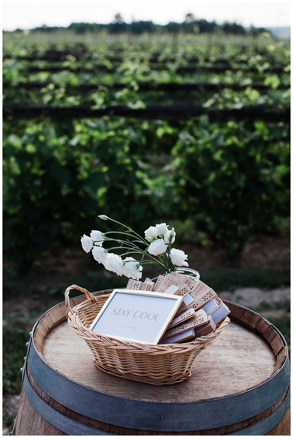 Stay Cool Fans for outdoor winery wedding| Adamo Estate Winery| Toronto photographer| 3photography